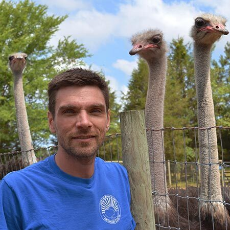 Ryan Olufs with ostriches
